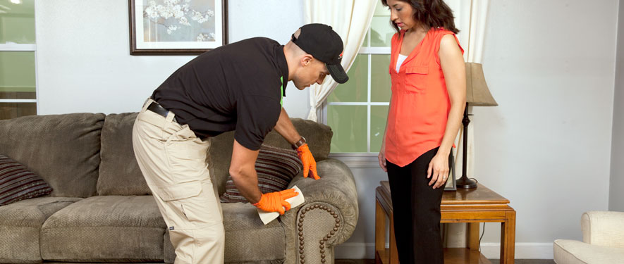 Redding, CA carpet upholstery cleaning
